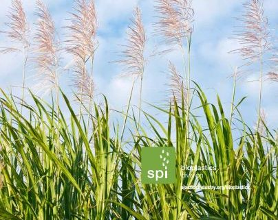 SPI Bioplastics Simplified